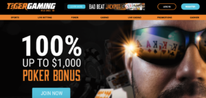 tiger gaming casino review